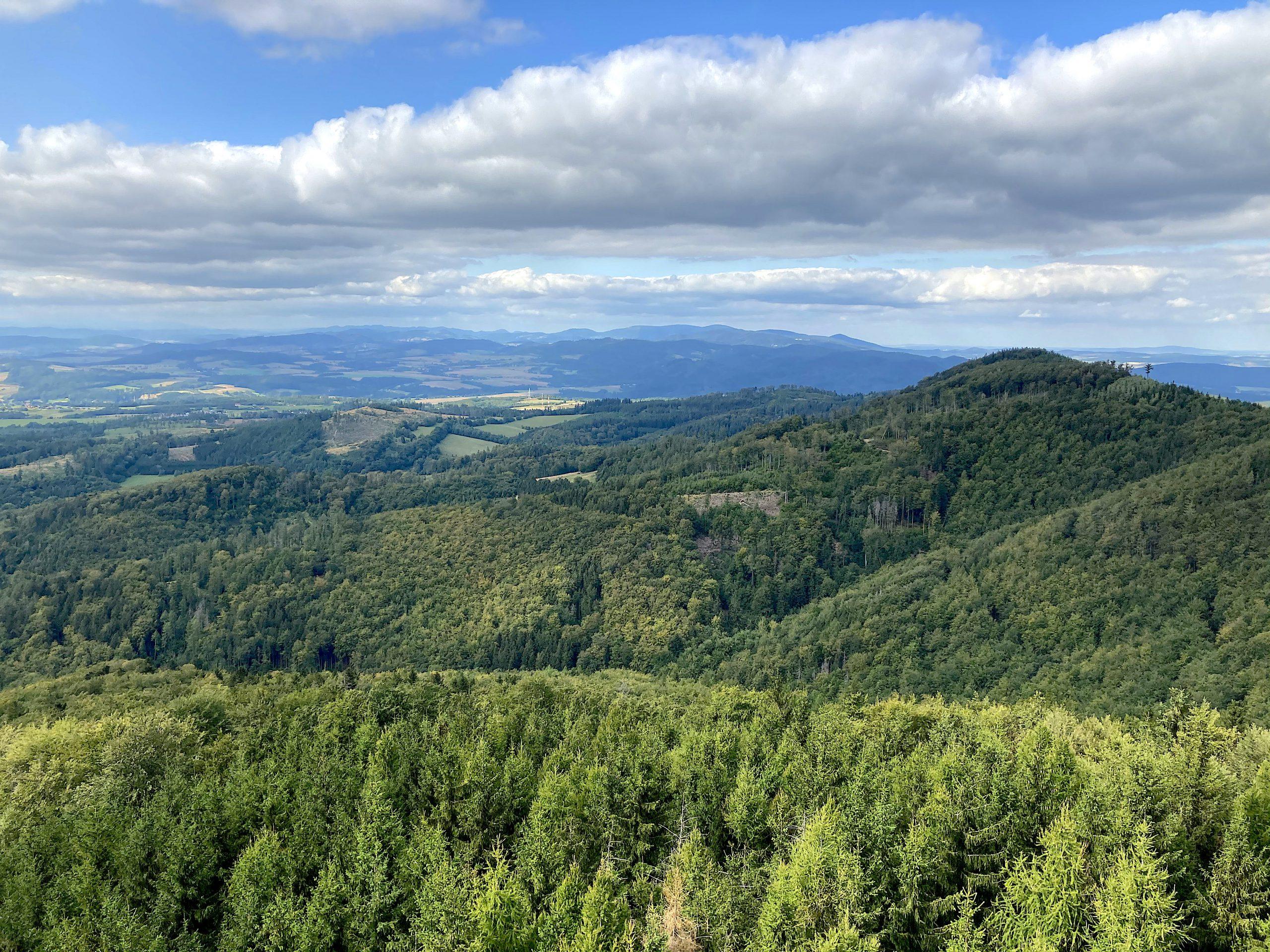 Widok z wieży widokowej na Kłodzkiej Górze